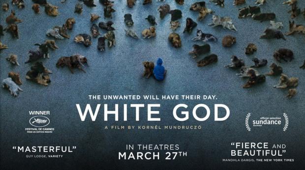 whitegod